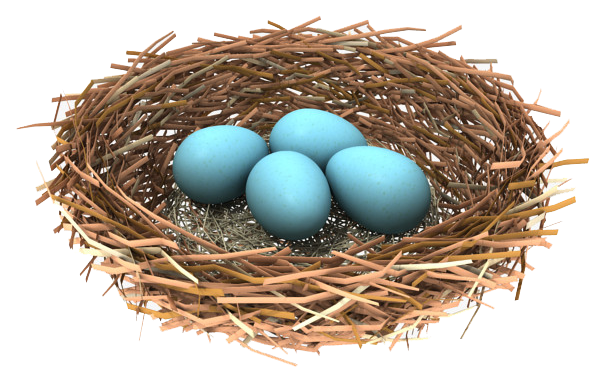 Nest PNG - 23496