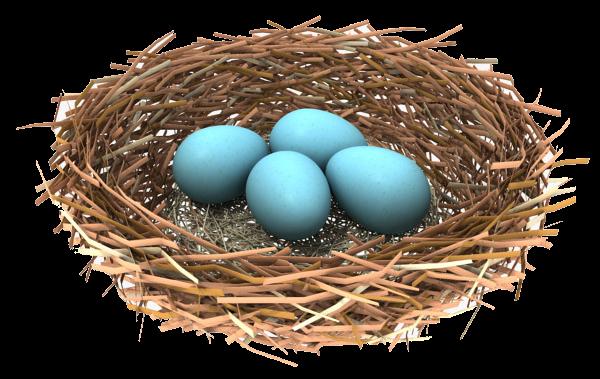 Nest PNG Transparent Image - Nest PNG