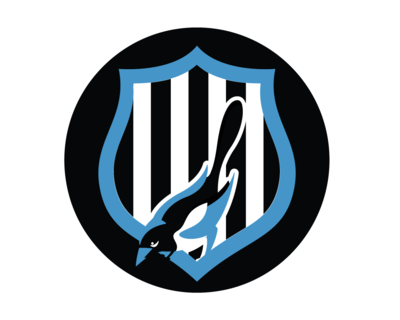 Newcastle United PNG - 31059