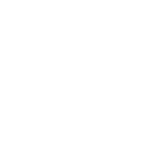 Newcastle United PNG - 31048