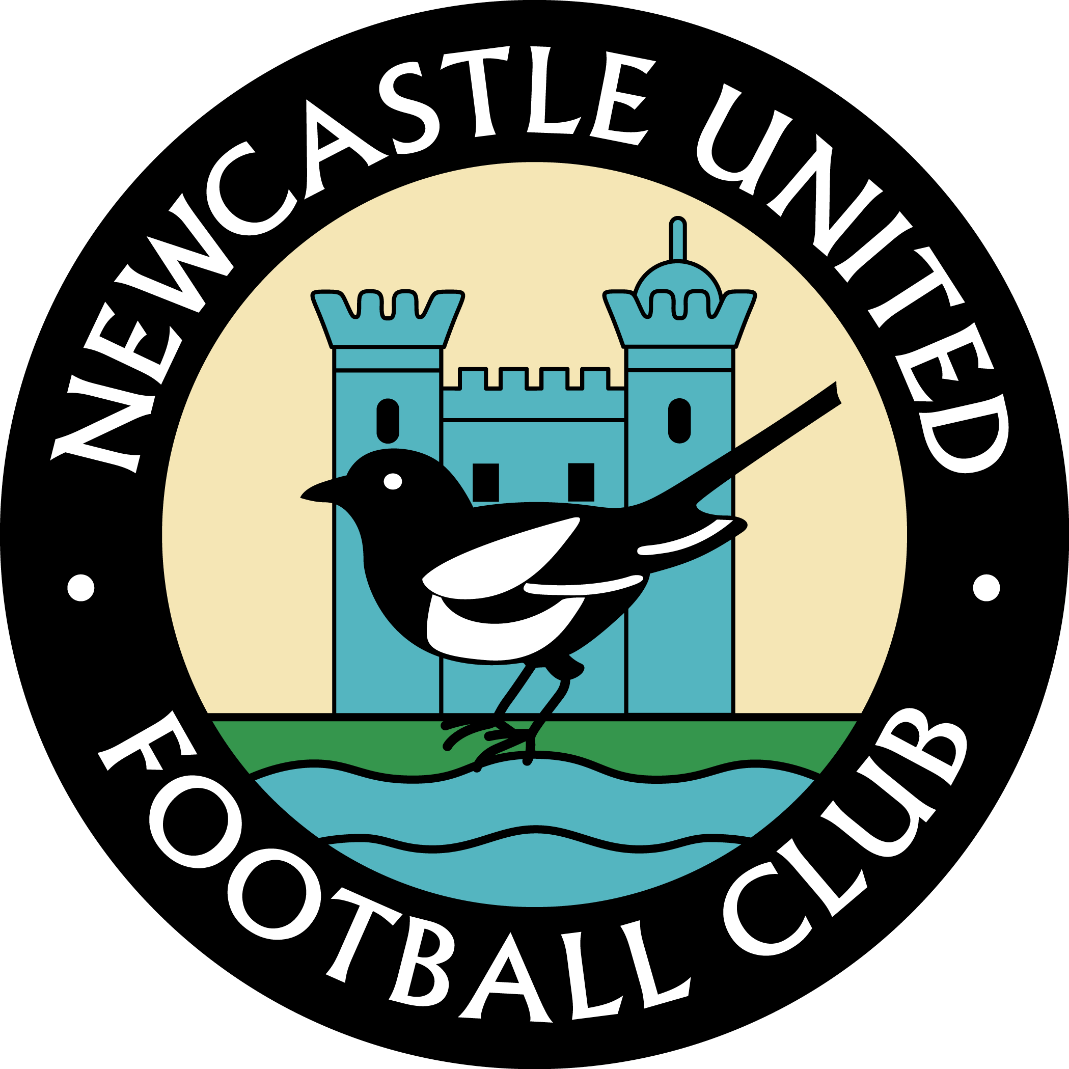 Newcastle United PNG - 31056