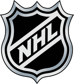 I hesitated at the time and figured Iu0027d hold off because I knew that the NHL  and the PlusPng.com  - Nhl PNG