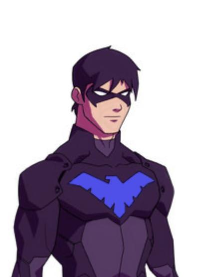 Nightwing PNG - 22707