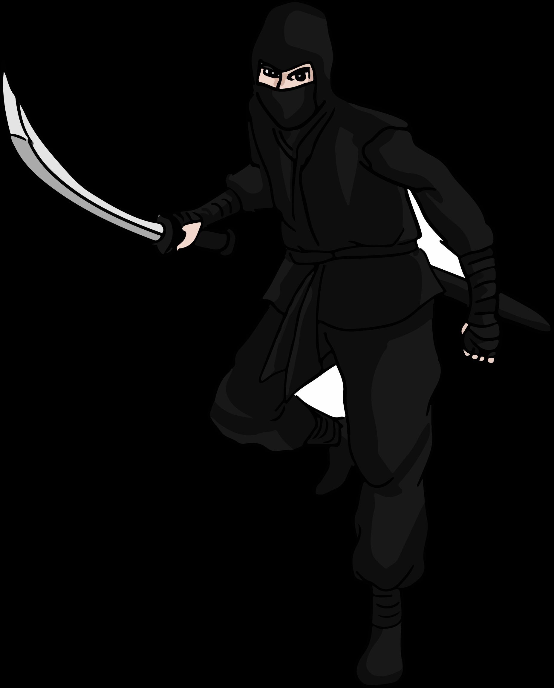 Ninja Png Pic PNG Image - Ninja HD PNG