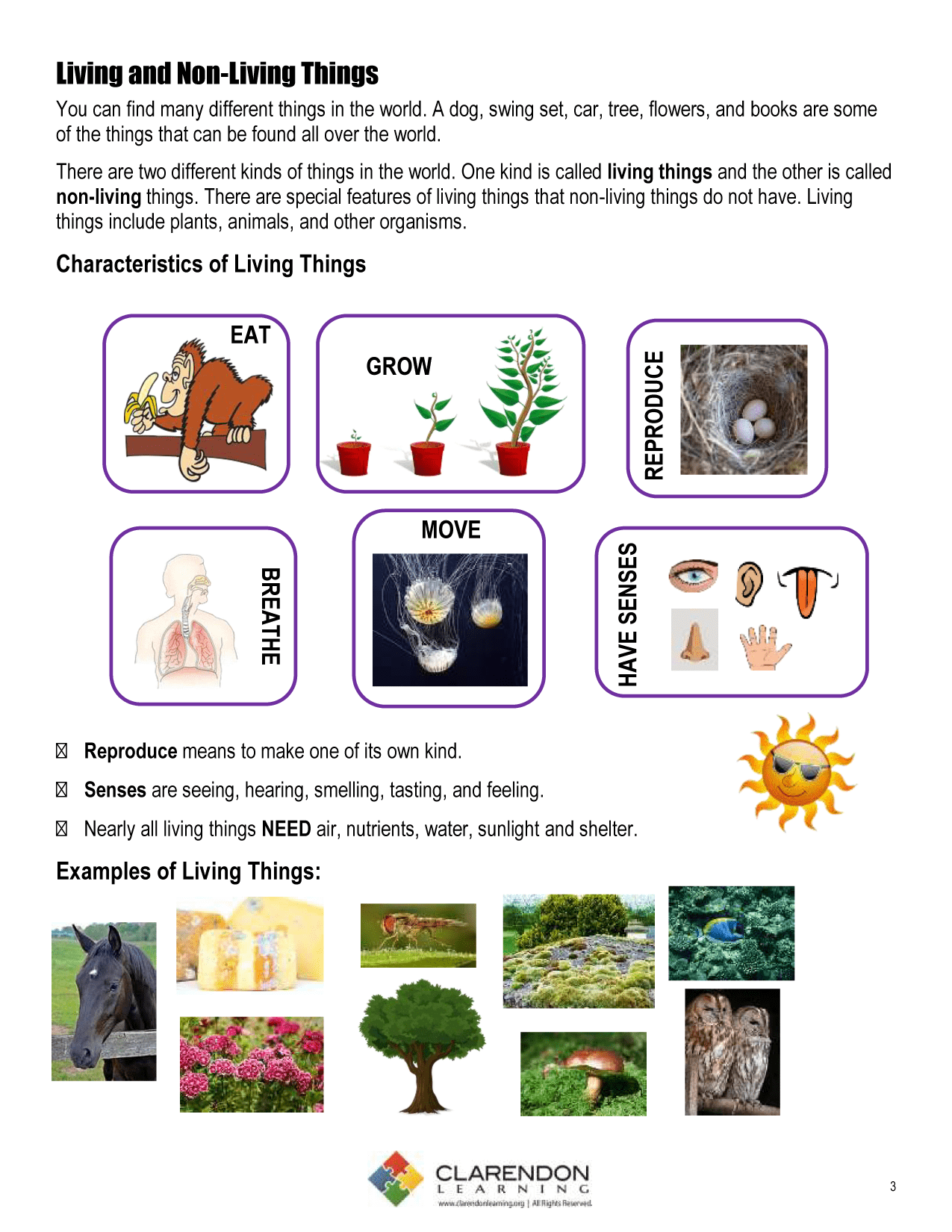 living_and_nonliving_things_for_kids ·  living_and_nonliving_things_activities - Non Living Things Pictures For Kids PNG