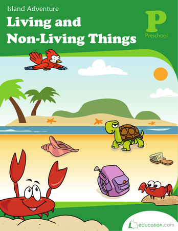 Science Workbooks - Non Living Things Pictures For Kids PNG