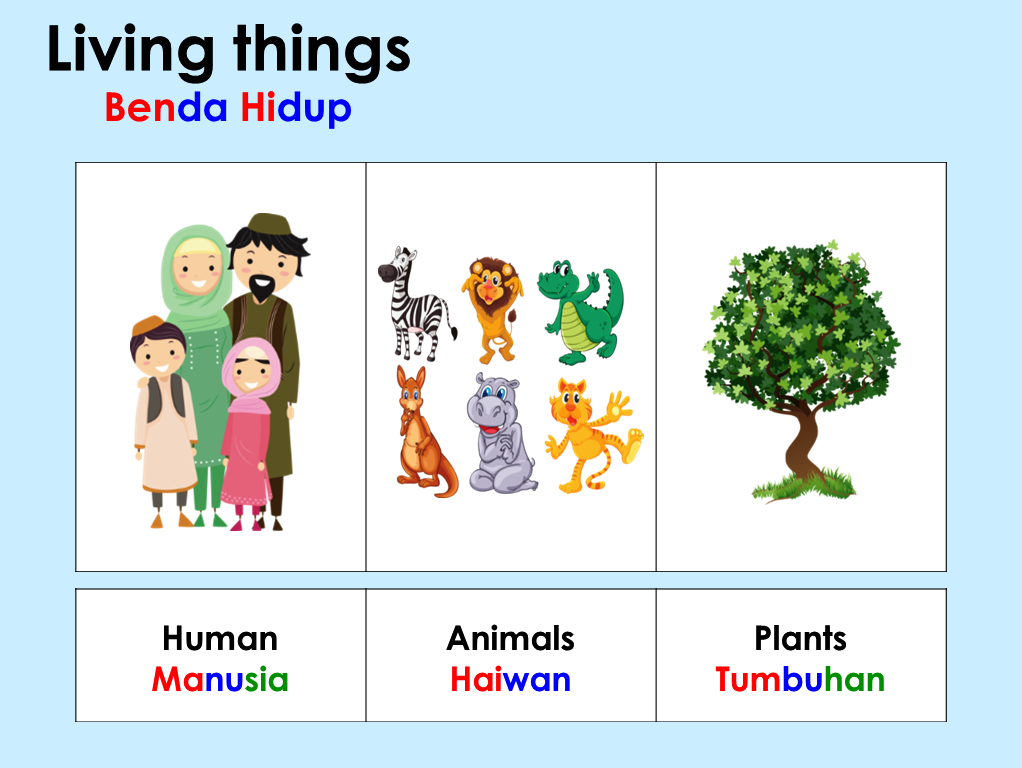 Non Living Things Pictures For Kids PNG - 73791