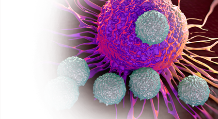 ONCOLOGY - Oncology PNG