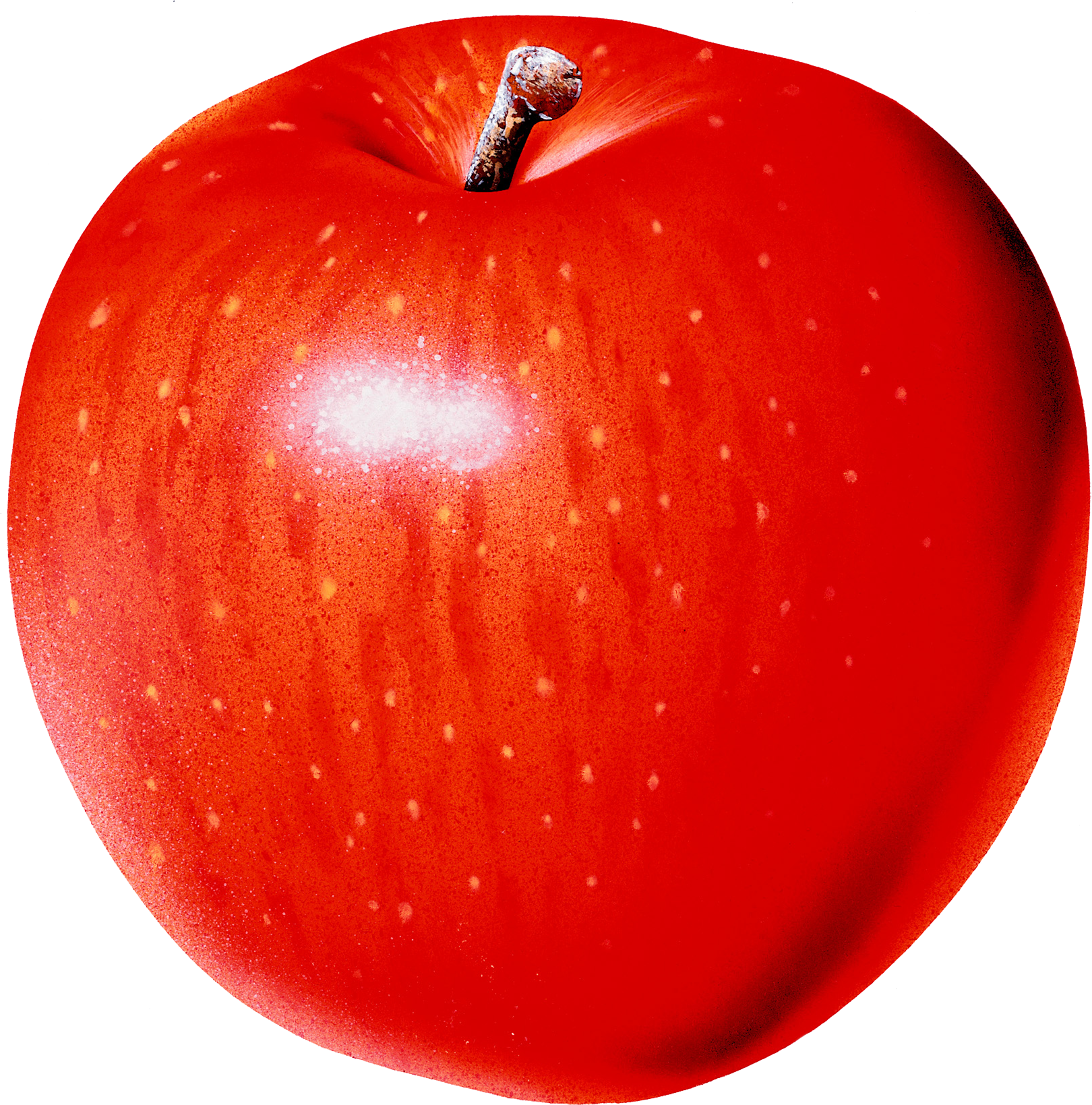 Apple PNG - One Apple PNG