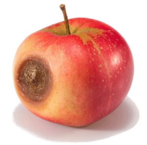 It is well-known that negative interactions have a bigger impact than  positive ones, and that people tend to remember a personu0027s bad qualities  more vividly PlusPng.com  - One Apple PNG
