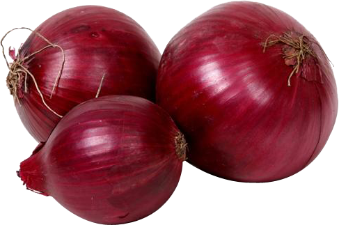 Red onion PNG image