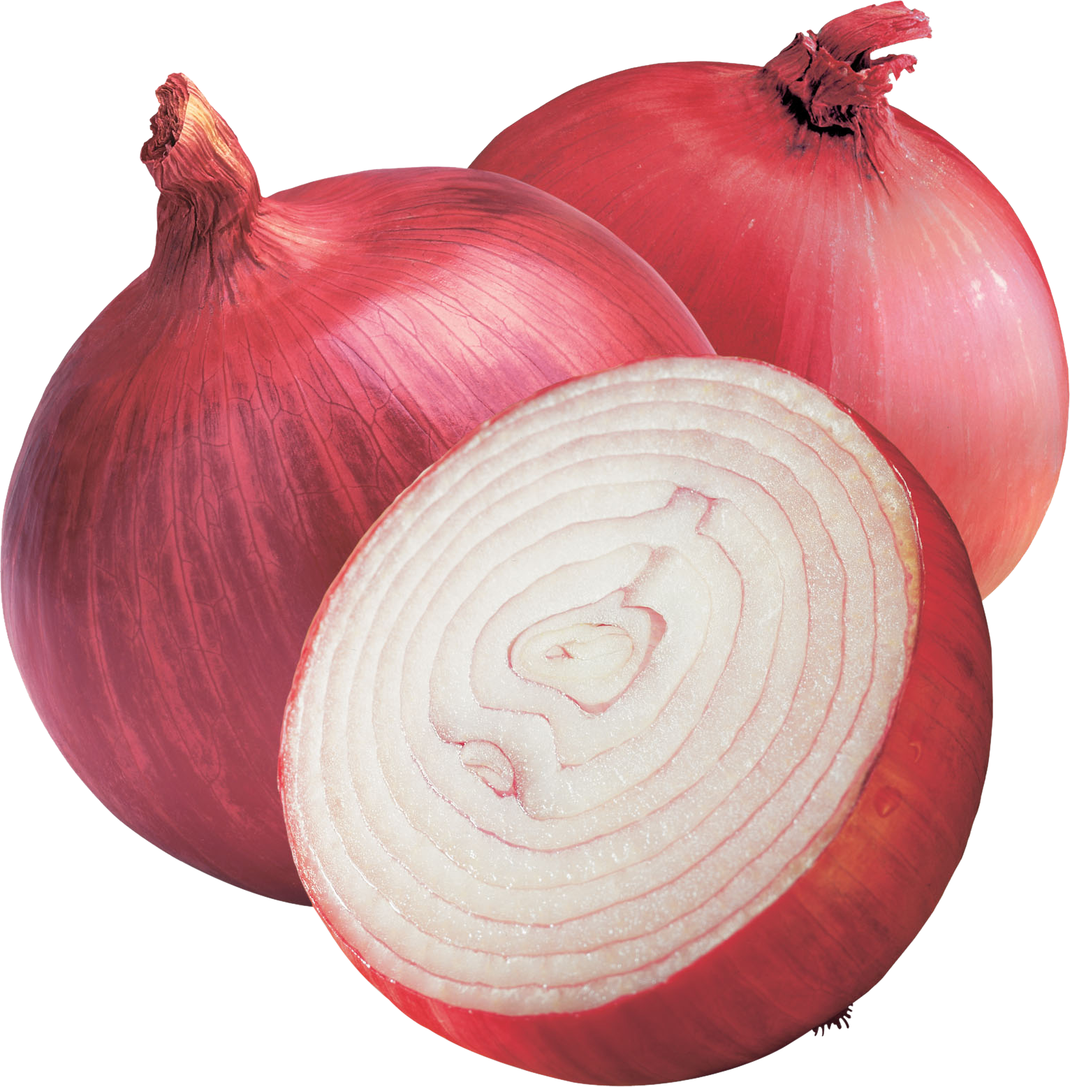 Onion PNG - 18485