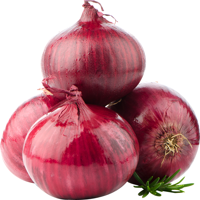 Onion PNG - 18495