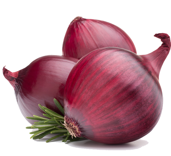 Onion PNG - 18482