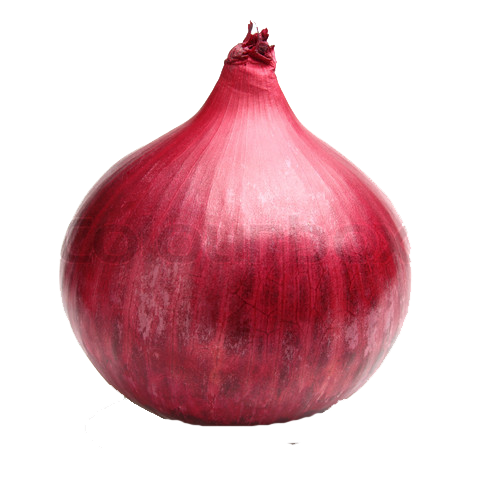 Onion PNG - 18487