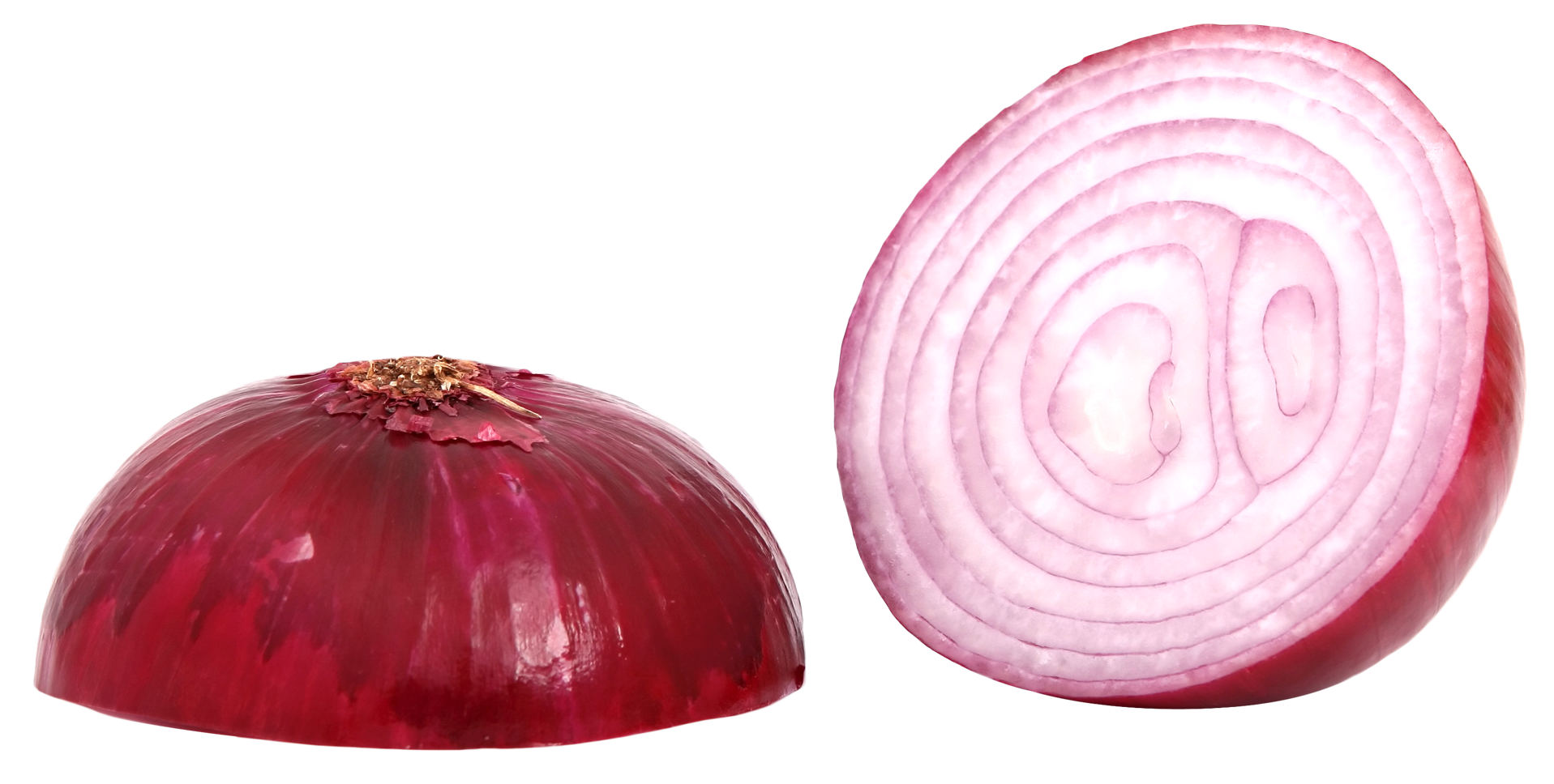 Onion PNG - 18489