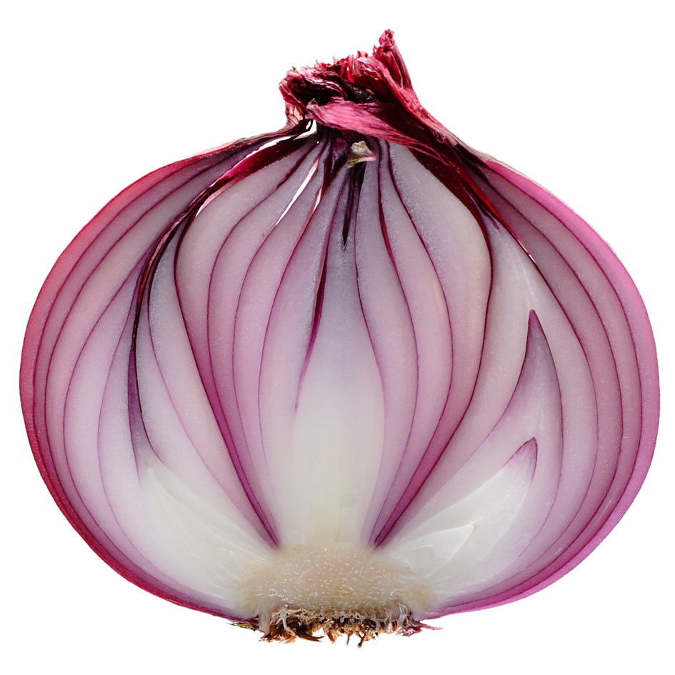 Onion PNG - 18488