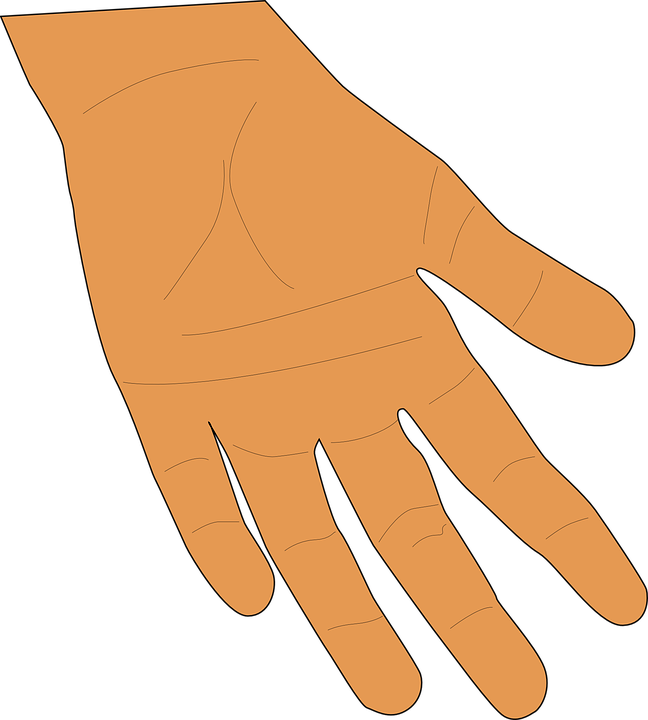 Hand, Palm, Fingers, Human, Skin, Giving, Thumb, Open - Open Giving Hands PNG