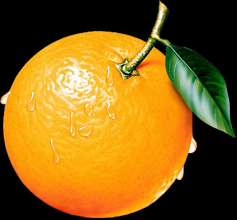 Orange Clipart. - Orange HD PNG