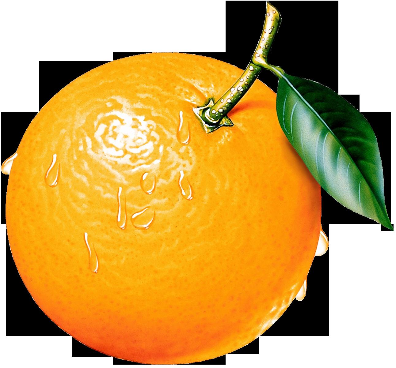 Orange hd clipart - Orange HD PNG