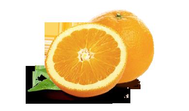 Orange PNG-PlusPNG.com-390 - Orange PNG