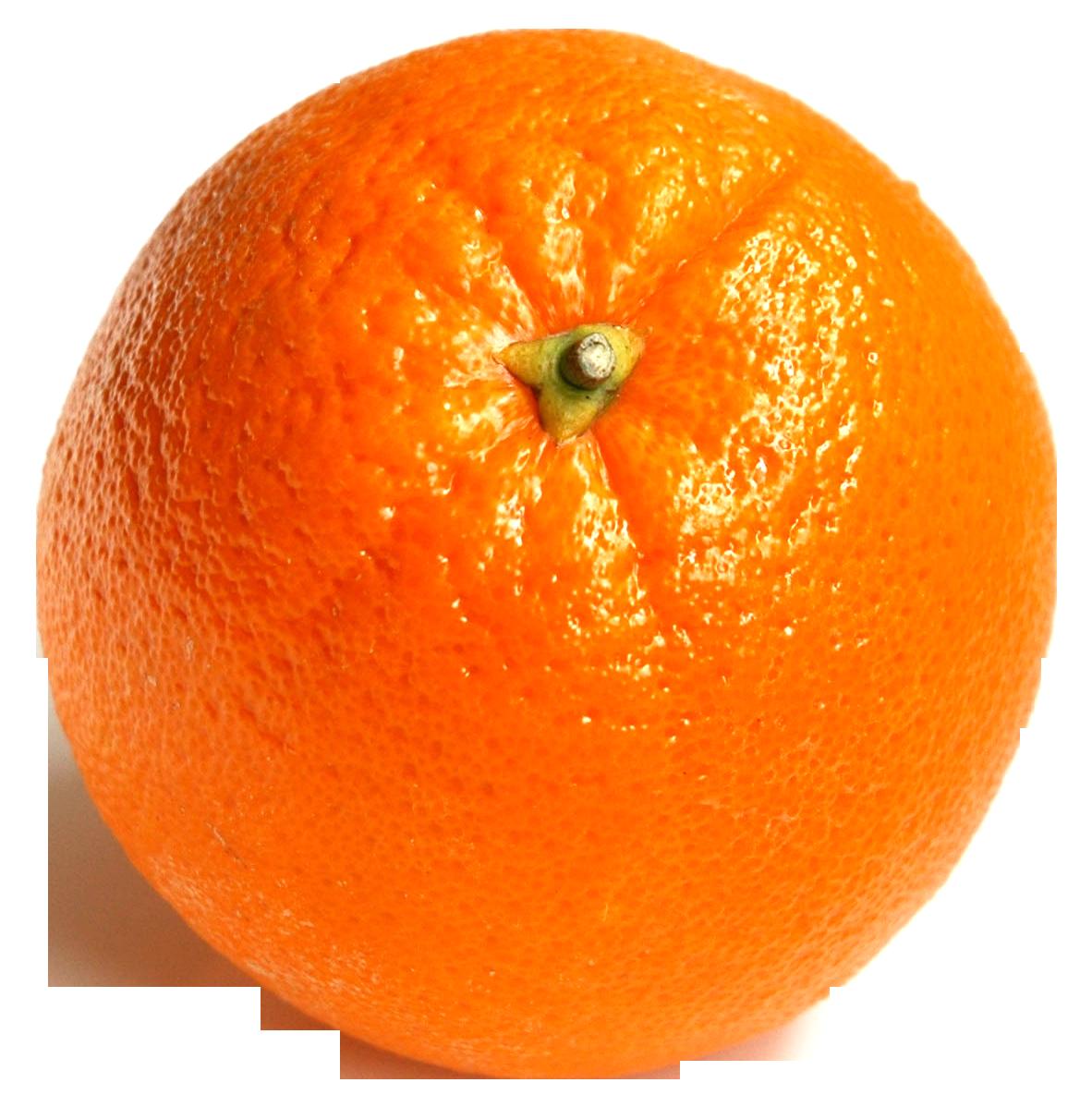Orange PNG - 19045