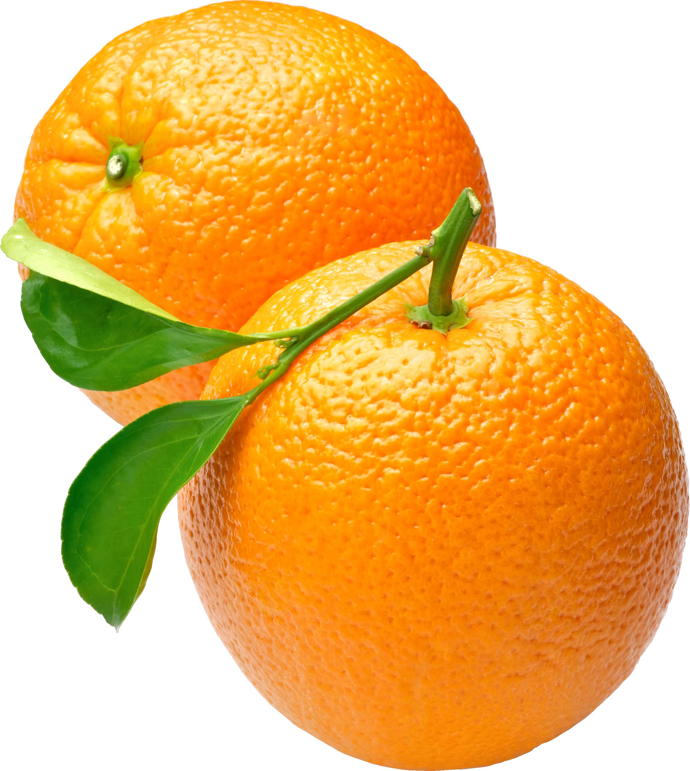 Orange PNG - 22805