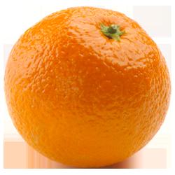 Orange PNG - 19042