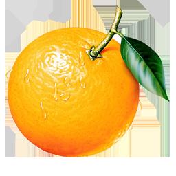 Orange PNG - 22804