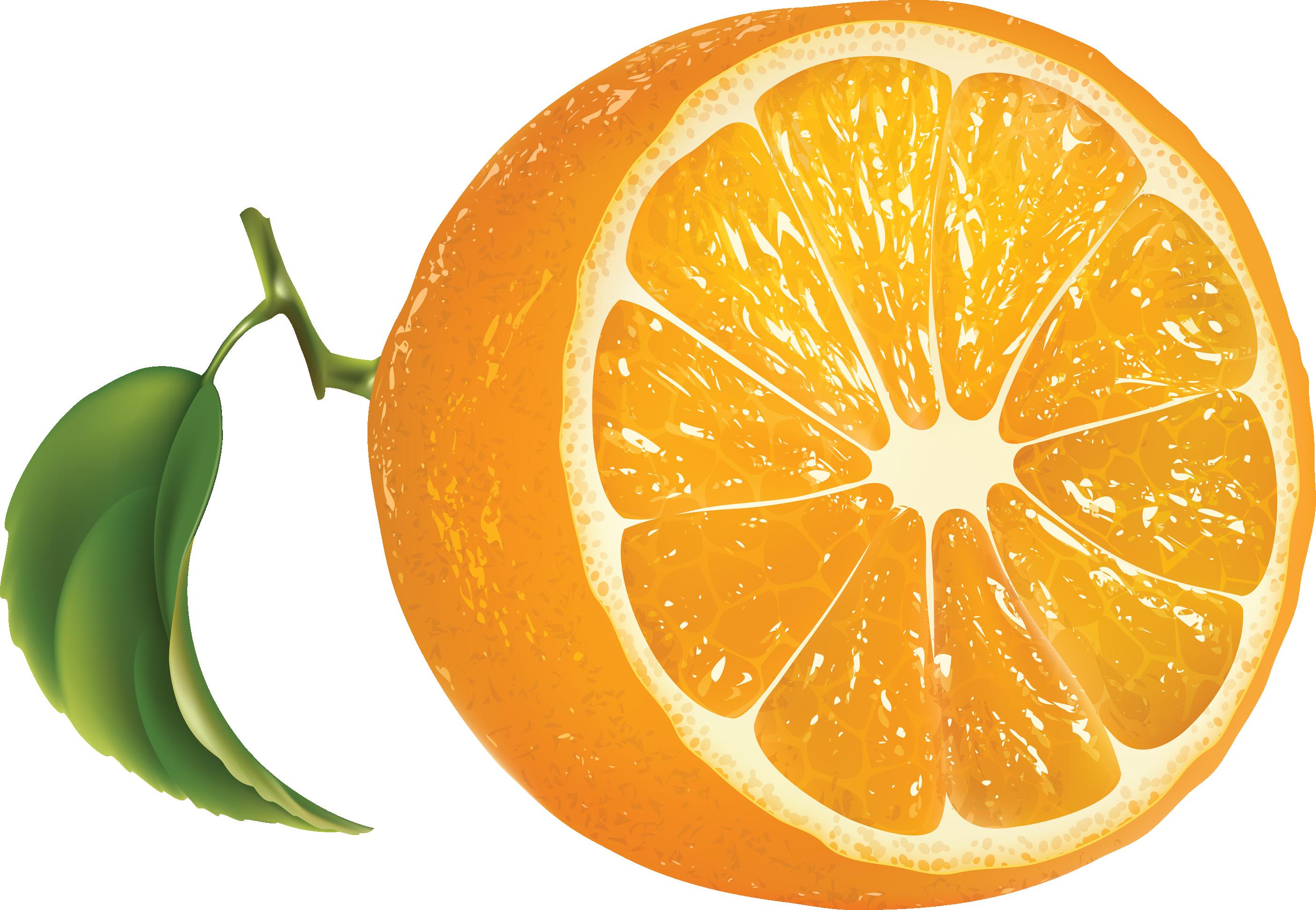 Orange PNG - 19048