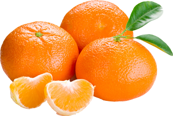 Oranges, Orange PNG image, free download - Orange PNG
