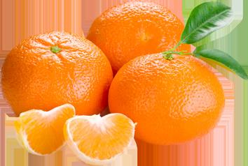 Orange PNG - 22814