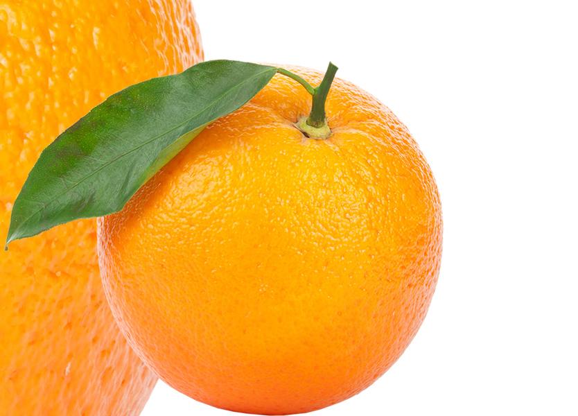 Orange PNG - 22816