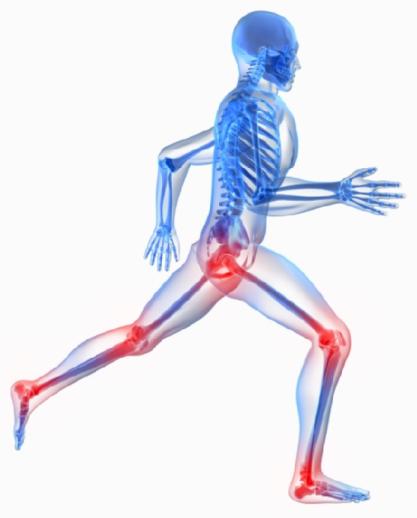 Orthopedics PNG - 72928
