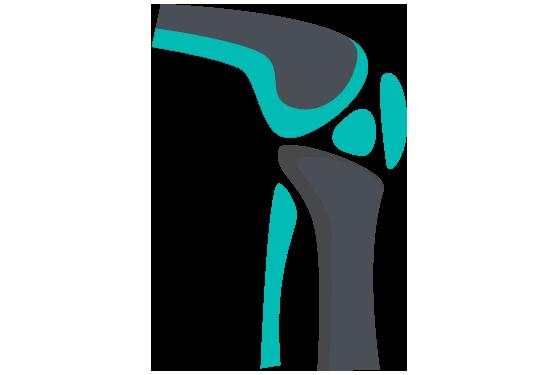 Orthopedics PNG - 72932
