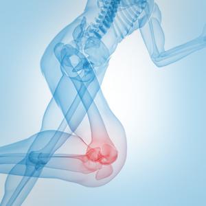 Orthopedics PNG - 72940