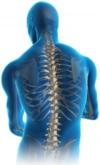 Orthopedics PNG - 72931