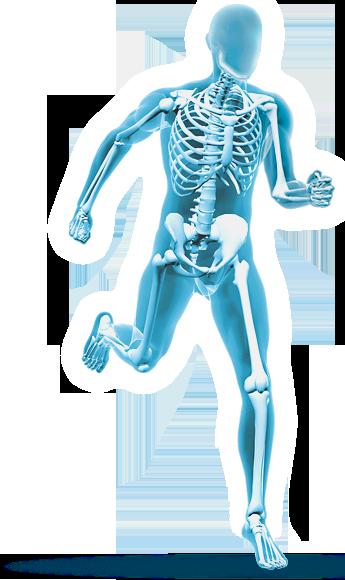 Orthopedics PNG