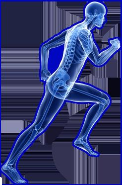 Orthopedics PNG - 72929