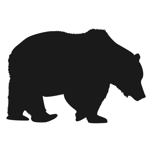 Oso polar png - Oso PNG Black And White
