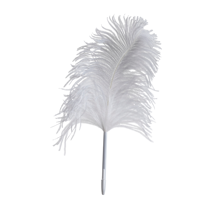 White Ostrich Feather Clip Art - Ostrich Feather PNG