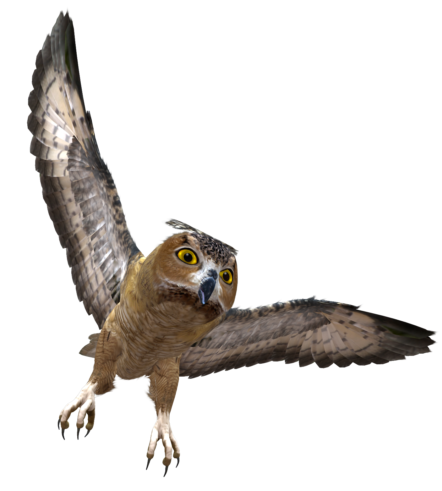 Owl PNG - 15907