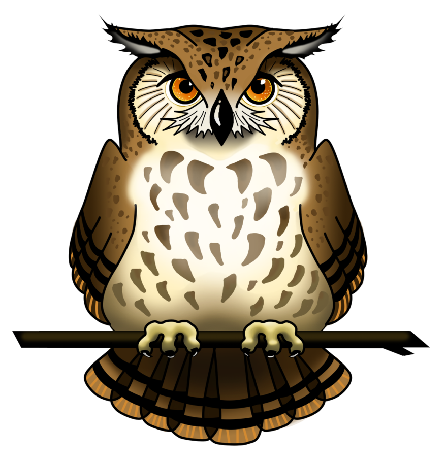Owl PNG - 15890