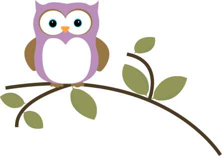 Owl on a Leafy Branch - Owls In A Tree PNG