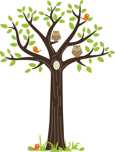 Wall colour - Owls In A Tree PNG