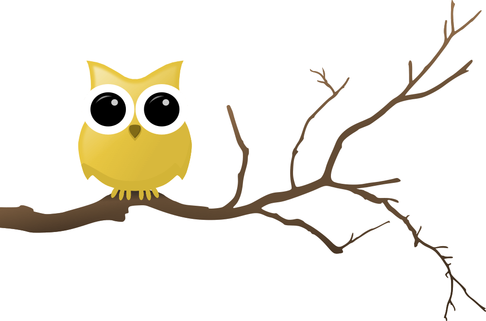 Yellow Owl on Tree Branch - Owls In A Tree PNG