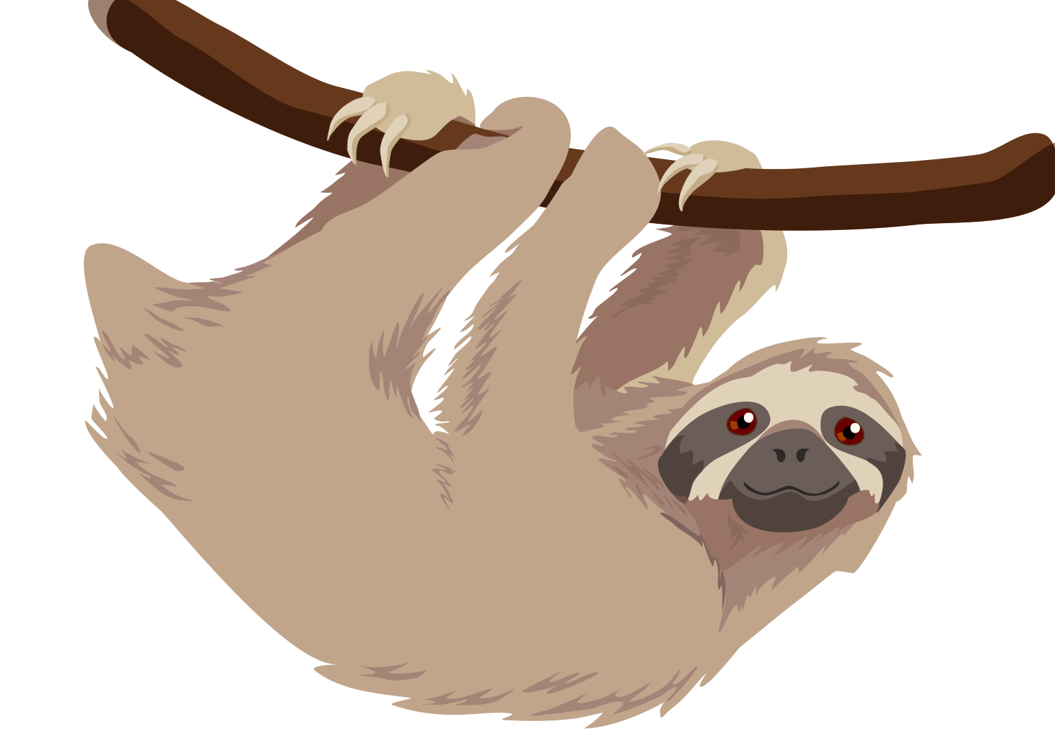 Page not found | Veronica Guzzardi - Sloth PNG