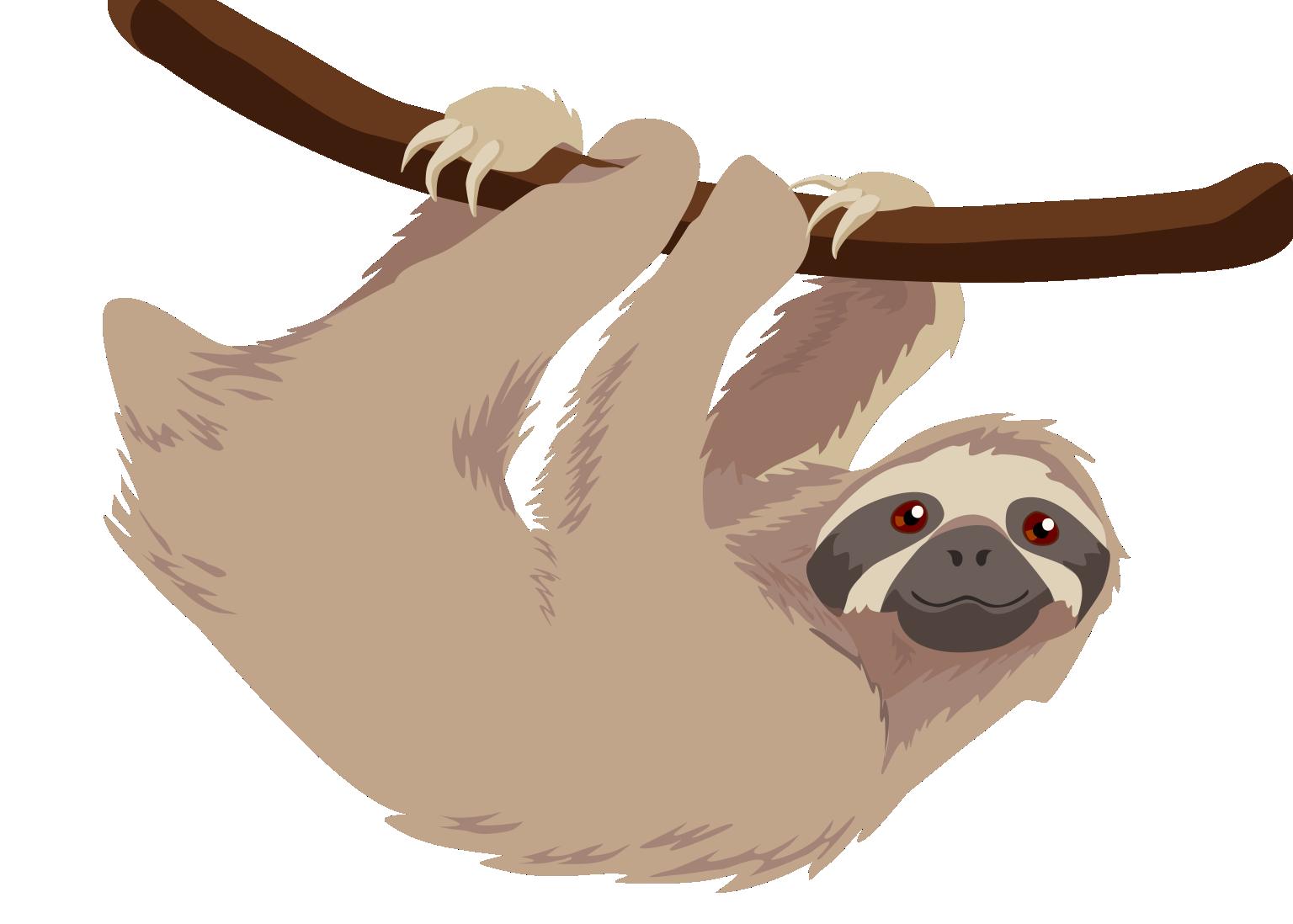 Sloth PNG - 6280