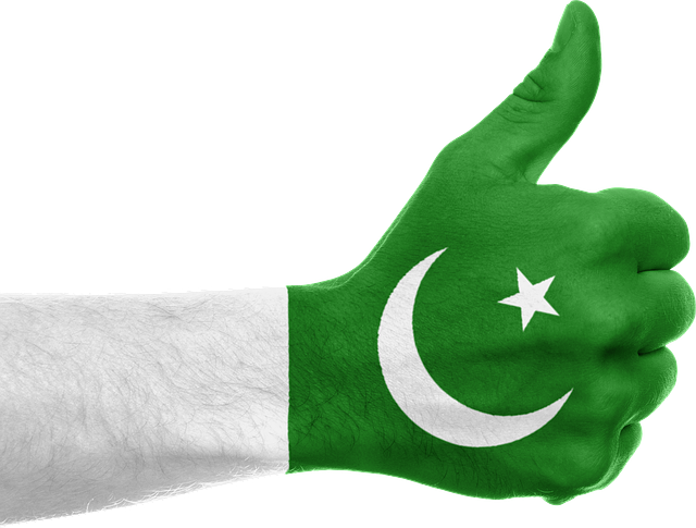Free illustration: Pakistan, Flag, Hand, Thumbs Up - Free Image on Pixabay  - 641446 - Pak Flag PNG