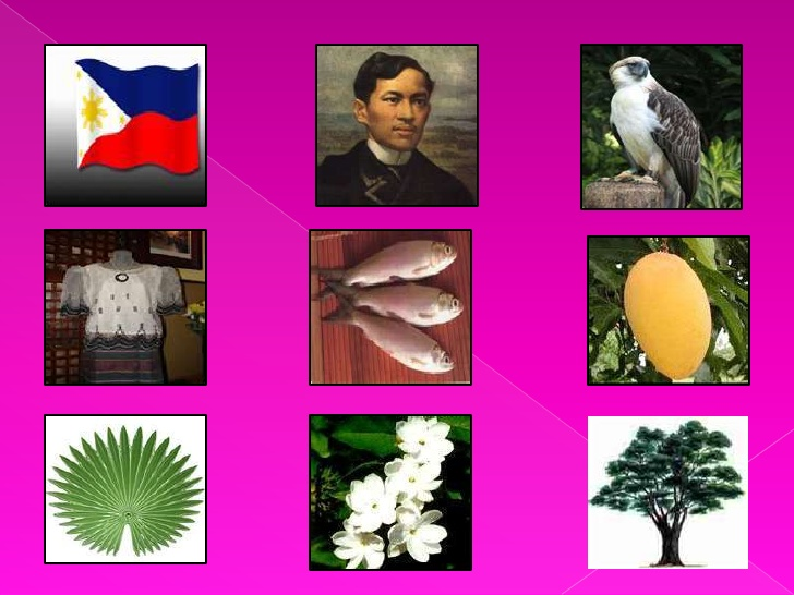 Pambansang Sagisag Ng Pilipinas PNG - 86362